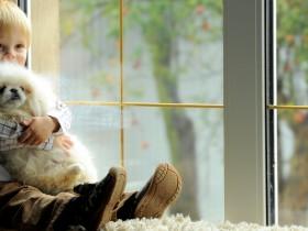 3 основних міфа про металопластикові вікна
