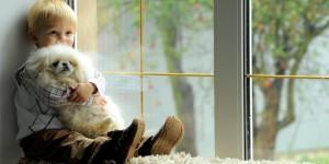 3 основных мифа про металлопластиковые окна